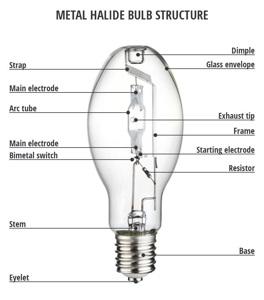 đèn metal halide là gì?