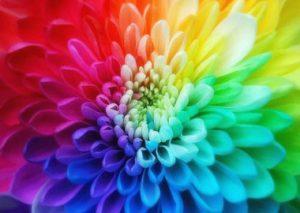 màu sắc tác động lên con người như thế nào?
